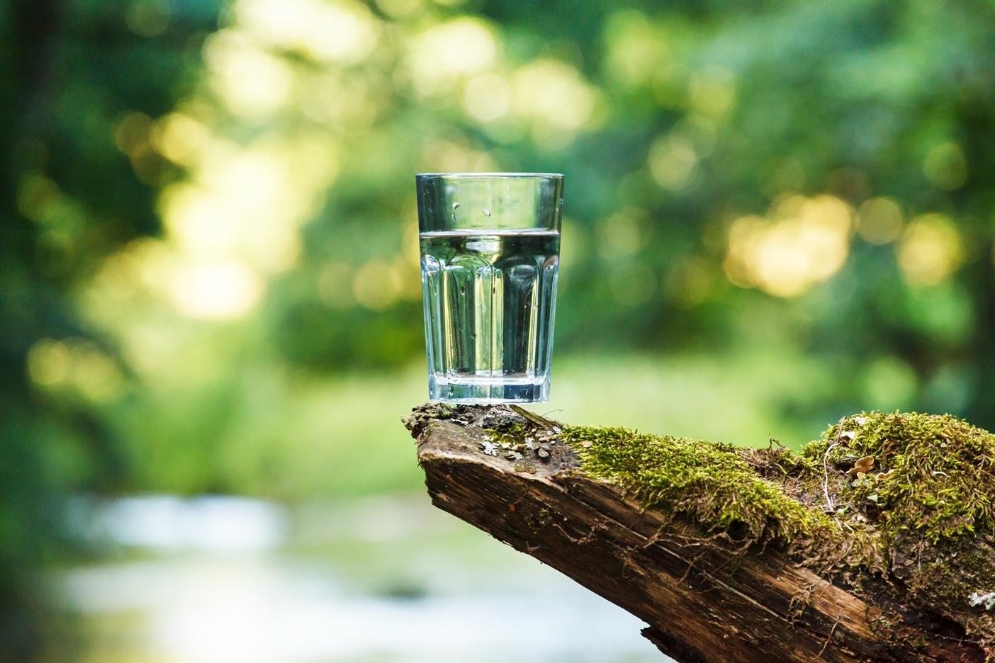 Amžinos jaunystės paslaptis – vanduo