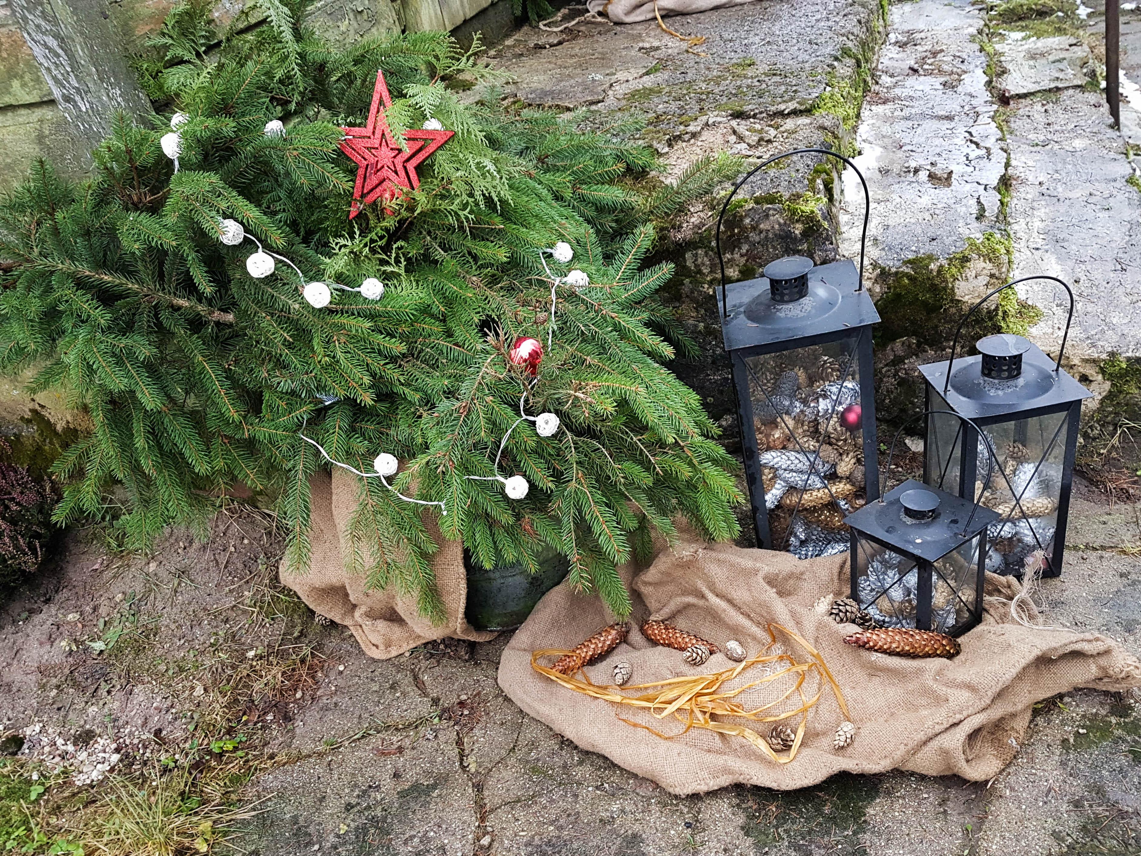 Žiemos šventės senoje sodyboje