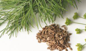 Kuo naudingi kvapnieji krapai?