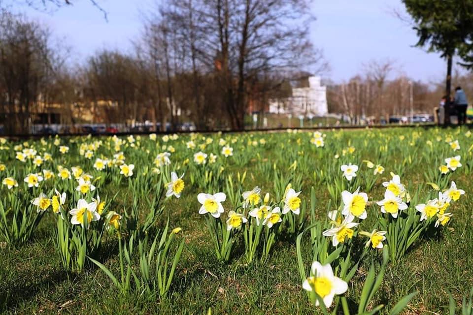 Pavasario renginiai