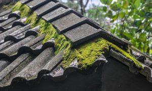Asbestas kelia riziką sveikatai