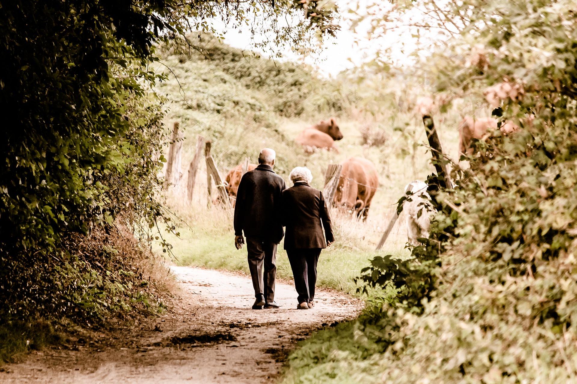 Kuo daugiau vaikščiokime pėsčiomis!