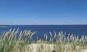 Jūra gali užkrėsti…