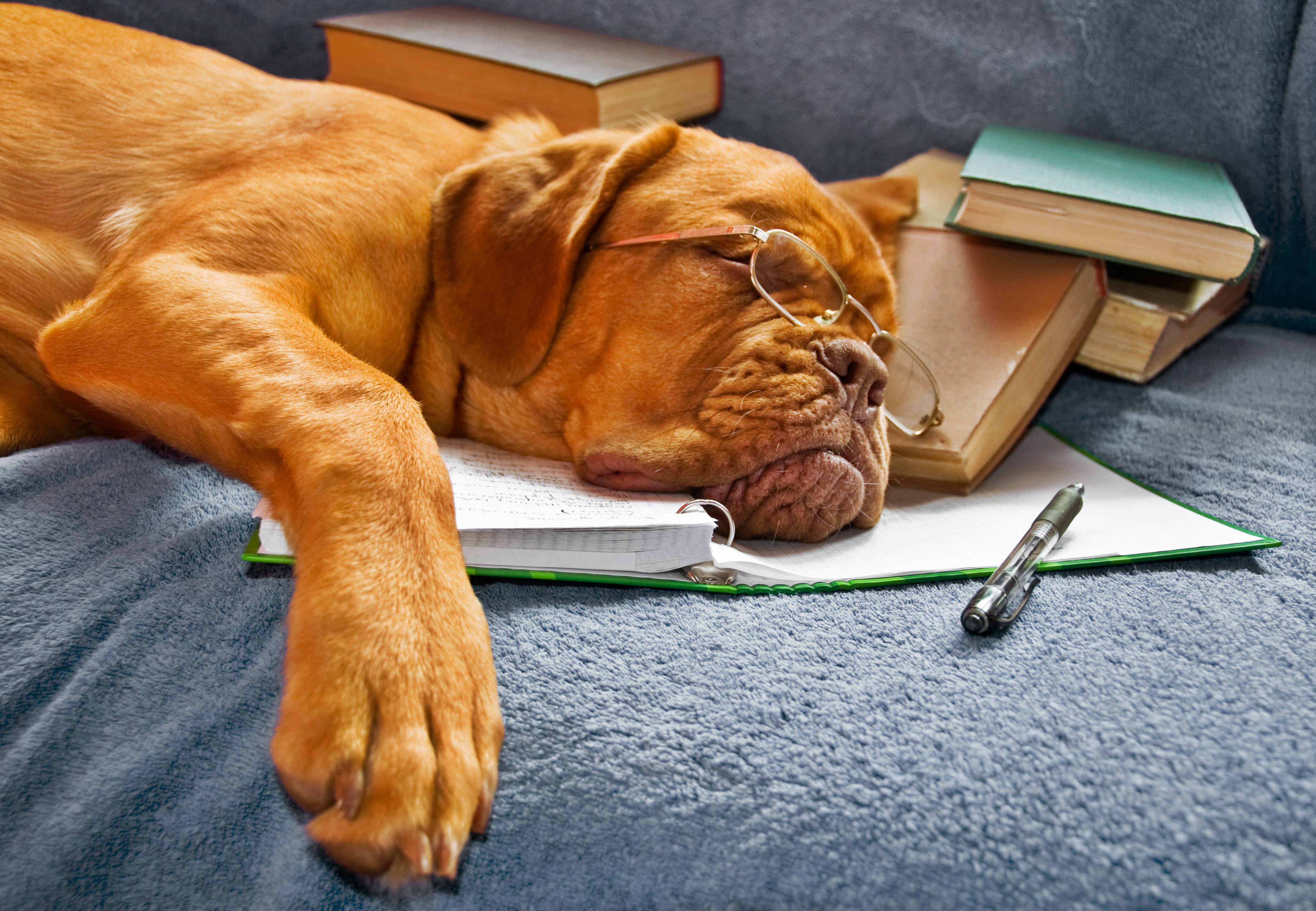 Gero miego taisyklės