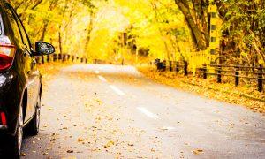 Ruduo – avaringiausias laikas keliuose