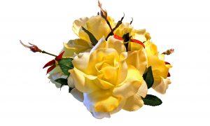 Dirbtinės gėlės – namams ir kapams