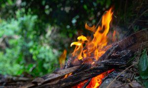 Už žolės deginimą – baudos