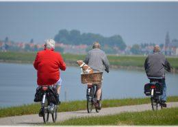 dviračių takas